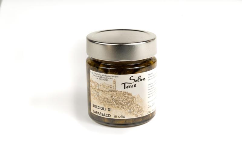 boccioli-di-tarassaco-cicoria-selvatica